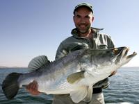 Výpravy za rybami do Egypta